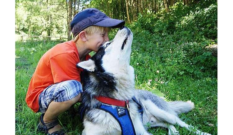 husky kindergeburtstag feiern mit 17 sibirischen husky 39 s kindergeburtstag auf kids. Black Bedroom Furniture Sets. Home Design Ideas
