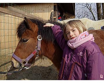 Ponyreiten Ferienangebot