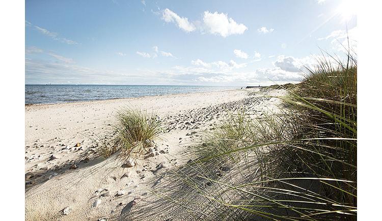 Ferien auf dem Bauernhof Ostsee