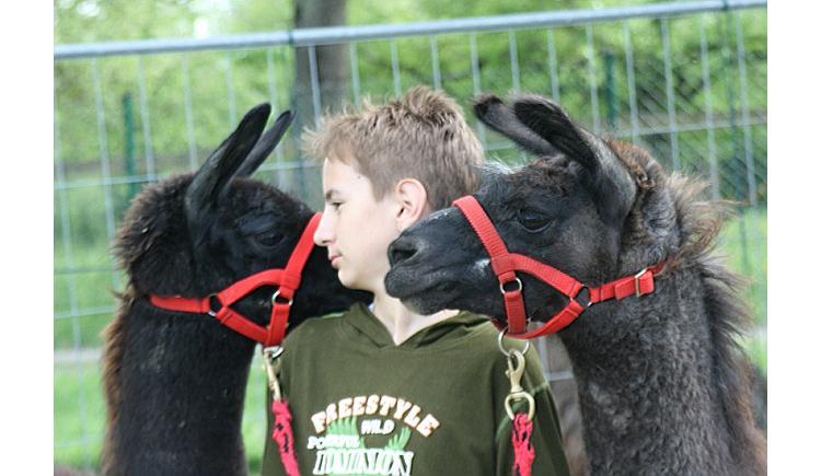 Kindergeburtstag mit Tieren
