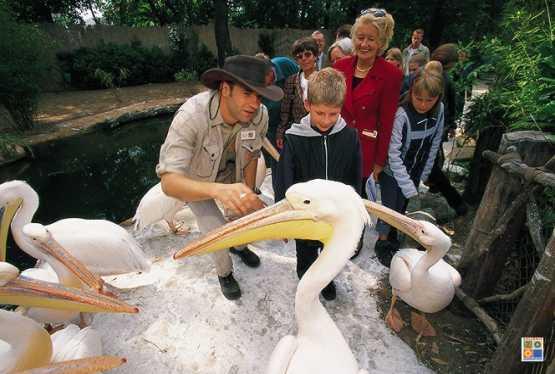 Kindergeburtstag Zoo Hannover