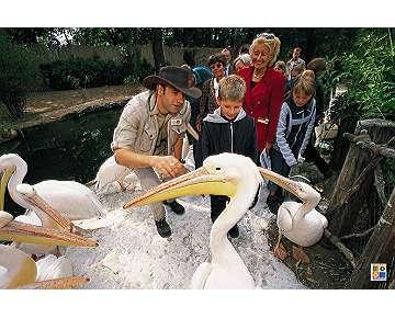kindergeburtstag im erlebnis zoo hannover kindergeburtstag auf kids. Black Bedroom Furniture Sets. Home Design Ideas